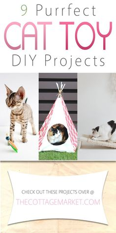 9 Purrfect Cat Toy DIY Projects - The Cottage Market