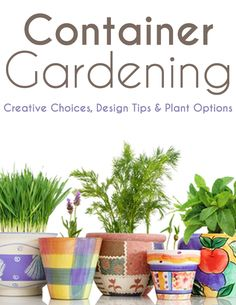 You're only limited by your imagination when it comes to creating a beautiful and bountiful container garden, but there are a few things to keep in mind.