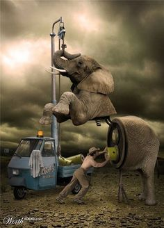 ♂ Dream ✚ Imagination ✚ Surrealism Surreal art Charge her up! elephant