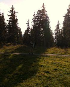 So geht Herbsturlaub im SalzburgerLand. Outdoor, Celestial, Mountains, Sunset, Nature, Travel, Climbing, Alps, Hiking