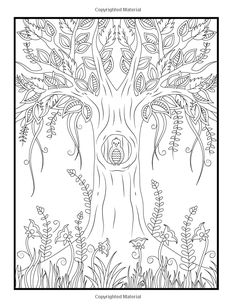 Amazon Magical Forest An Adult Coloring Book With Enchanted Animals