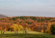 Šarkany Golf Courses, Projects