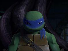 My first time doing TMNT daughter scenarios! please read. Tmnt Turtles, Teenage Ninja Turtles, Tmnt 2012, Tmnt Leo, Tmnt Mikey, Leonardo Tmnt, Nickelodeon, Funny Cute, Pictures
