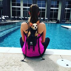 This dog backpack will be the best purchase you make if you travel often with your four-legged friend.