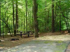 Pockett campsite