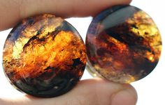 Amber Plugs by Onetribe This site has all the plugs from my dreams.Chiapas Amber Plugs by Onetribe This site has all the plugs from my dreams. Plugs Earrings, Gauges Plugs, Ear Gauge Plugs, 00 Plugs, Pearl Earrings, Ear Jewelry, Body Jewelry, Jewlery, Punk Jewelry