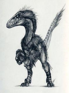 Deinonychus was smallish, but far more like the classic raptors from Jurassic Park than actual Velociraptors were. Go figure.