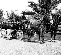 BERGHOFF BREWING COMPANY, FORT WAYNE IN: BEER WAGON USED FOR ADVERTISING SHOWING HORSES, WAGON WITH BARRELS AND DRIVER. :: Historic Photos