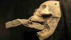 Incredible Archaeological Discoveries