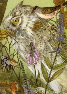 Owl from Thumbelina The Fairy Tale Book Adrienne Segur illustration Art And Illustration, Book Illustrations, Fairytale Fantasies, Fairytale Art, Fairy Tales For Kids, Gif Animé, Owl Art, Wonderland, Oeuvre D'art