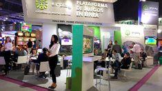 SAGSE 2017: paso por paso, hacia el futuro de la industria del juego en Latinoamérica