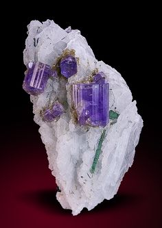 Apatite on Albite and Tourmaline - Golconda Mine, Minas Gerais, Brazil