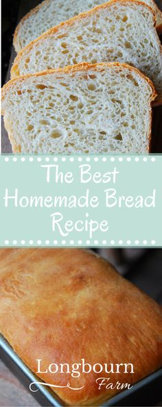 This is the best homemade bread recipe! The bread is soft and airy with a perfec… This is the best homemade bread recipe! The bread is soft and airy with a perfect buttery crust. It will turn out every time you make it. Try it today! How To Make Bread, Food To Make, Best Homemade Bread Recipe, Homemade Breads, Homemade Biscuits, Farmhouse Bread Recipe, Buttery Bread Recipe, One Loaf Bread Recipe, Best White Bread Recipe