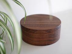 Walnut Lidded Container by Masahiro Endo at OEN Shop - http://shop.the189.com/collections/masahiro-endo/products/walnut-lidded-container