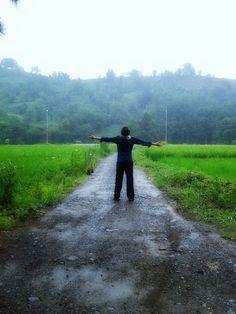 .iran,guilan / rainy day