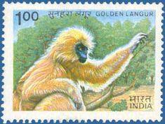 SG # 1099 (1983), Golden Langur