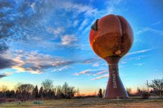 """Peachoid  The Peachoid was a focal plot point in the Netflix original series House of Cards episode """"Chapter 3"""", whereupon it is jokingly remarked that the structure resembles large buttocks or female genitalia.[5][4] The series' protagonist Frank Underwood, a native of Gaffney, keeps a photo of the Peachoid in his home office.  http://en.m.wikipedia.org/wiki/Peachoid"""