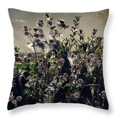 Morning dew backlight Throw Pillow for Sale by Sverre Andreas Fekjan Morning Dew, Pillow Sale, Poplin Fabric, Cleaning, Throw Pillows, Zipper, Printed, Decoration, Stylish