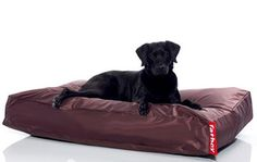 Fatboy chairs are low-lying and extremely comfortable for you and your pup. With a variety of shapes and sizes, these flexible pieces work in a bedroom, living room, or corporate office for adults and the custom doggy beds are portable for your pet.