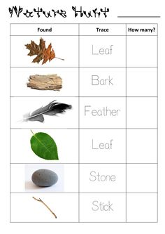 Nature Scavenger Hunt for Juniors/Preschoolers - Created by Kelly :o)