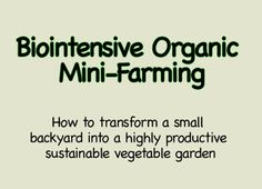 Learn how to transform a small backyard into a highly productive, self-watering, sustainable vegetable garden that doesn't use any chemicals or pesticides. Small Backyard Gardens, Farm Gardens, Small Backyards, Veggie Gardens, Vegetable Gardening, Organic Gardening Tips, Organic Farming, Grow Organic, Biointensive Gardening