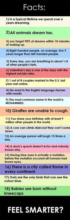 Many spelling errors...