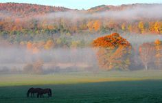 Autumn scenery in western Massachusetts - Denis Jr. Tangney/Getty Images
