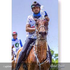 #repost @aj6544 www.pinterest.com/FazzaProject @ faz3 @uncle_saeed  @almaktoum__fans @groupfazzagair @fazza3_team @fazzafans @fazza3fans #faz3  #fazza #fazza3 #dubai #uae #hamdan  #emirate #almaktoum #sheikhhamdan #binmohammed #horse #dxb #zabeel #endurance #prince - @Fazza FamilyProject- #webstagram