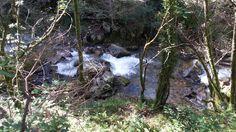 Paisaje senda del río Troncoso Painting, Scenery, Fotografia, Painting Art, Paintings, Painted Canvas, Drawings