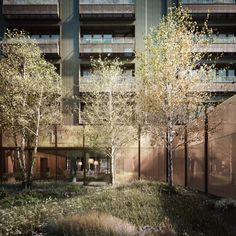 CGI artist Forbes Massie creates painterly renderings  Grenadier House by Mae Architects