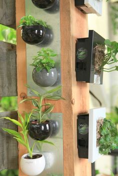 magnetic plant pots - so cool!