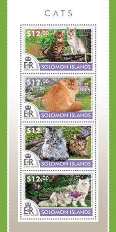 Post stamp Solomon Islands SLM 15217 aCats (Toyger, Singapura, Persian, Maine Coon, Selkirk Rex)