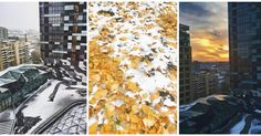 These dawn to dusk views beautifully fall in place as the perfect autumn-winter palette #coloursofnature