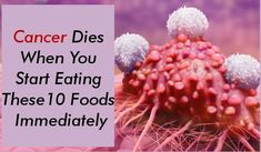 Here we will know about cancer dies when you start eating these 10 foods immediately. When talking about cancer, this is a disease caused by the growth of abnor