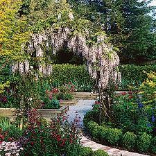 Image result for garden-cottage plants