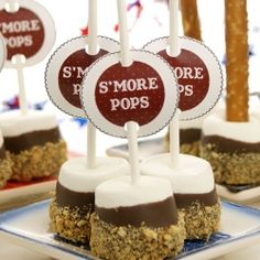 Super easy S'more Pops from Miss CandiQuik. Use either pretzel sticks or lollipop sticks. Poke the marshmallow with your choice of stick, dip in melted chocolate and roll in crushed graham crackers Köstliche Desserts, Delicious Desserts, Dessert Recipes, Yummy Food, Summer Desserts, Cupcakes, Cupcake Cakes, Bar Laitier, Yummy Treats