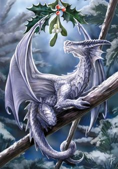 Anne Stokes Snow Dragon Yule card features a gorgeous dragon perched on a branch with a sprig of holly and mistletoe hanging above it s head A Anne Stokes, Magical Creatures, Fantasy Creatures, Woodland Creatures, Fantasy Kunst, Fantasy Art, Snow Dragon, Dragon Kiss, Dragon Cat