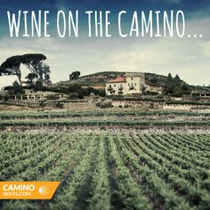 Win a tour to one of Galicias premier vineyards #wine #travel #caminodesantiago #galicia #spain