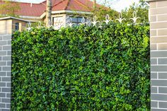 Spring Sensation Vertical Garden / Screen by Block Shop - Channel 9 Artificial Hedges, Garden Screening, Decorating Your Home, Greenery, Outdoor Structures, Fences, Spring, Plants, Channel