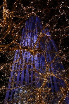 Christmas at Rockefeller Center, NYC