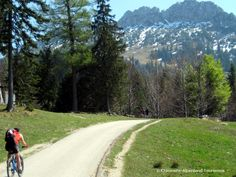 "Moutainbike-Strecke Richtung Kampenwand... Mountainbike Trail towards the ""Kampenwand""..."