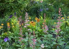 Gardens in Cornwall | Hidden Valley Garden | Par | Cornwall