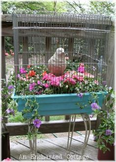 Upcycle an old hamster cage into a  birdcage planter.