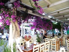 Pretty Restaurtant Mykonos  BIG