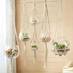 """Boho and modern in the same moment, the Macrame plant hanger delivers a refined yet earthy look to contemporary spaces. These beautifully knotted cotton caddies display glass bowls in a variety of sizes. Perfect for showcasing candles, succulents, and shells, these artisan-inspired accents decorate with free-spirited style. Set of 5; Cotton hanger and glass bowl; Bowl: 7""""Dia x 6.5""""H; Hanger: 42""""L; From hanger to bowl: 11.5""""Dia x 9.5""""H"""