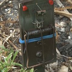 Perimeter Security: Trip Wire Alarms - Several Ideas to Utilize (Good for Camping and Hiking) Mouse Traps, Trip Wire Alarm, Perimeter Security, Survival Tools, Survival Prepping, Outdoor Survival, Camping Survival, Diy, Home Defense
