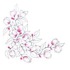 Botanicals - katie vernon art + illustration