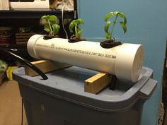 Picture of How To Build An N.F.T. Hydroponics System
