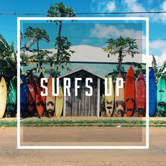 Everything you need to know about surfing in Hawaii. This list includes the best surfing locations, surf camps, places to learn to surf and best places for big waves. Hawaii Surf, Kailua Kona, Learn To Surf, Big Waves, Camping Life, Surfs Up, What To Pack, Camps, Oahu