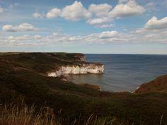 Bay (Flamborough Head)